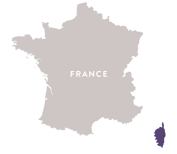 Map Of France And Corsica.Map France Corsica Regal Wine Imports